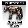 UO Grizzled Mare